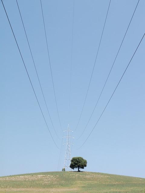 MM71-1508 TOD POW TREE X10 OP