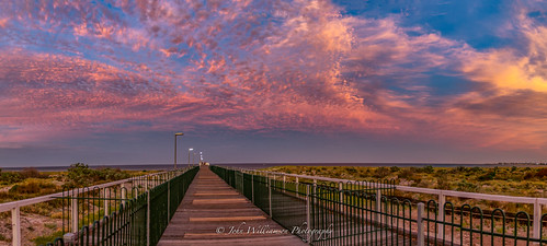 adelaide blue clouds jetty largsbay pink southaustralia sunrise yellow australia au beacheslandscapes