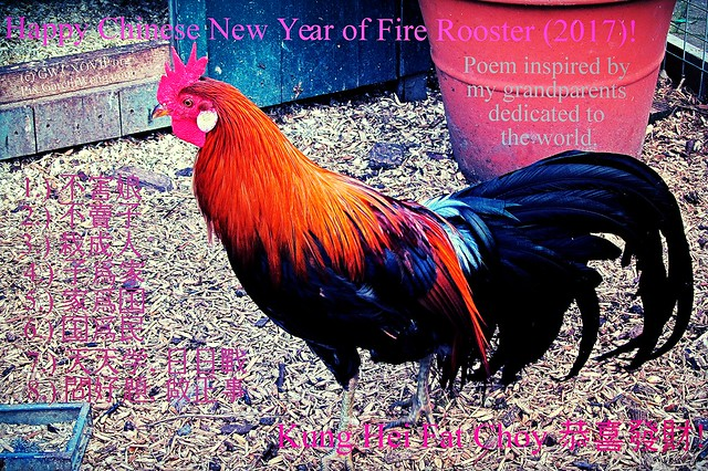 Happy New year of Fire Rooster 2017 IMG_9883_o Kung Hei Fat Choy 恭喜發財_o