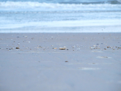 beach water seashells sand waves northcarolina atlanticocean topsailisland northtopsailbeach