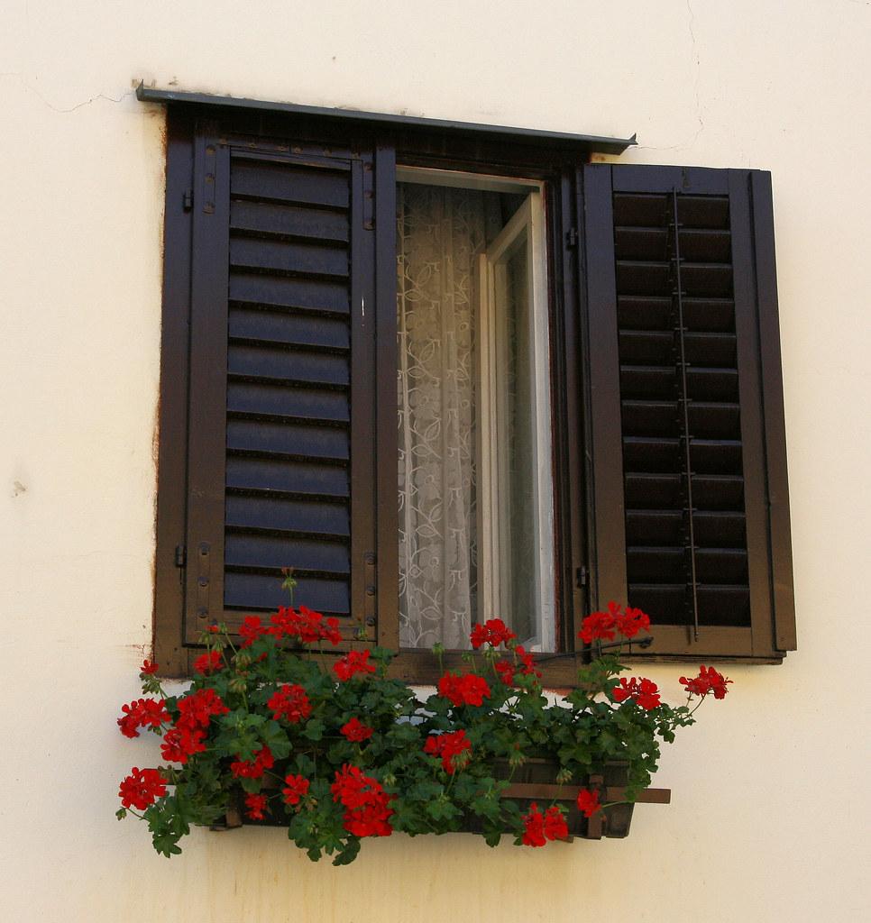 Window shutters.