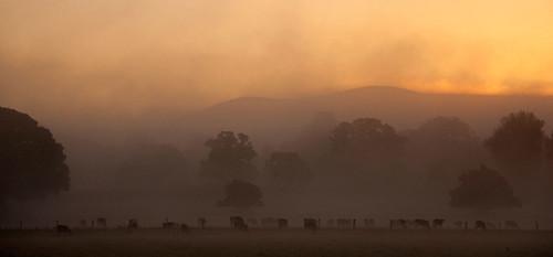 sunrise dorset blackmorevale childokeford hambledonhill
