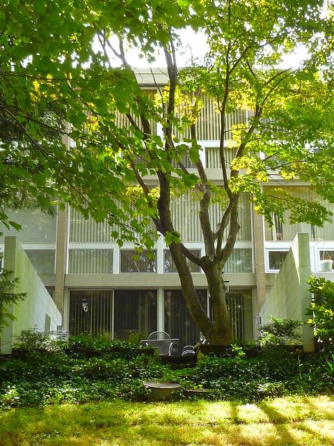 Hickory Cluster, Reston VA | Charles Goodman Architect