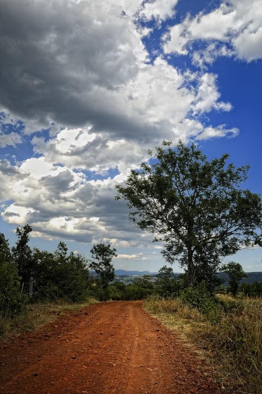 Une impression de piste Africaine ....en Haute Loire (43) France