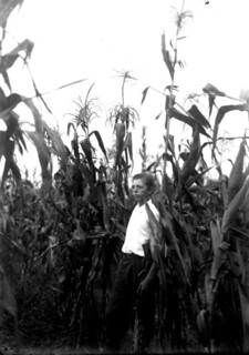 Corn Club contestant standing in field