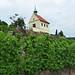 Barokní kaple svaté Kláry stojí na vrcholu vinice nad Trojským zámkem, foto: Petr Nejedlý