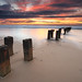Cambois Posts by Alistair Bennett