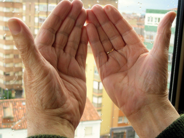 Mis manos. / My hands.