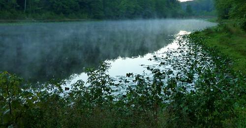 morning mist reflection fog landscape pond maryland evaporation cedarvillestateforest