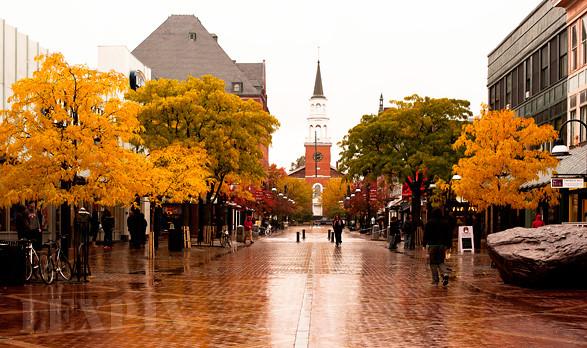 Touch of urban autumn