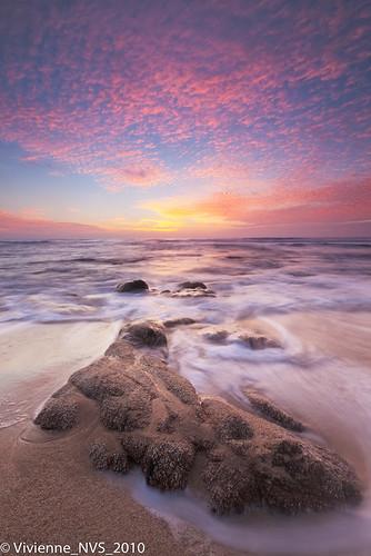 ocean california sunset beach golden sand rocks surf waves graywhalecove graywhalecovestatebeach