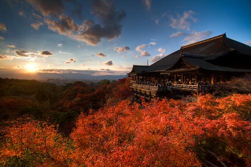 sunset temple maple kyoto kiyomizudera gettyimages mywinners ultimateshot flickrdiamond theunforgettablepictures