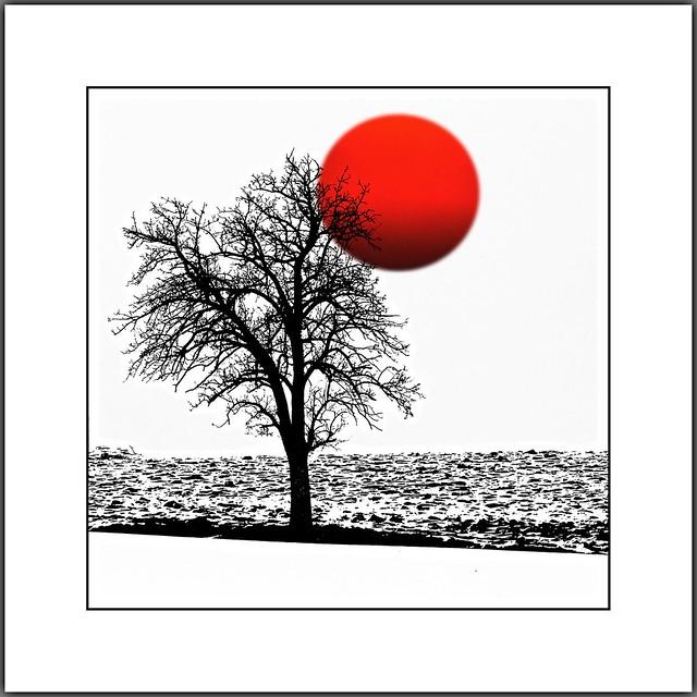 Wintersonne  (winter sun)