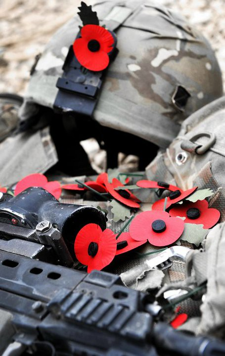 Remembrance Day Poppies Laying On A Soldier S Kit In Afgha Flickr