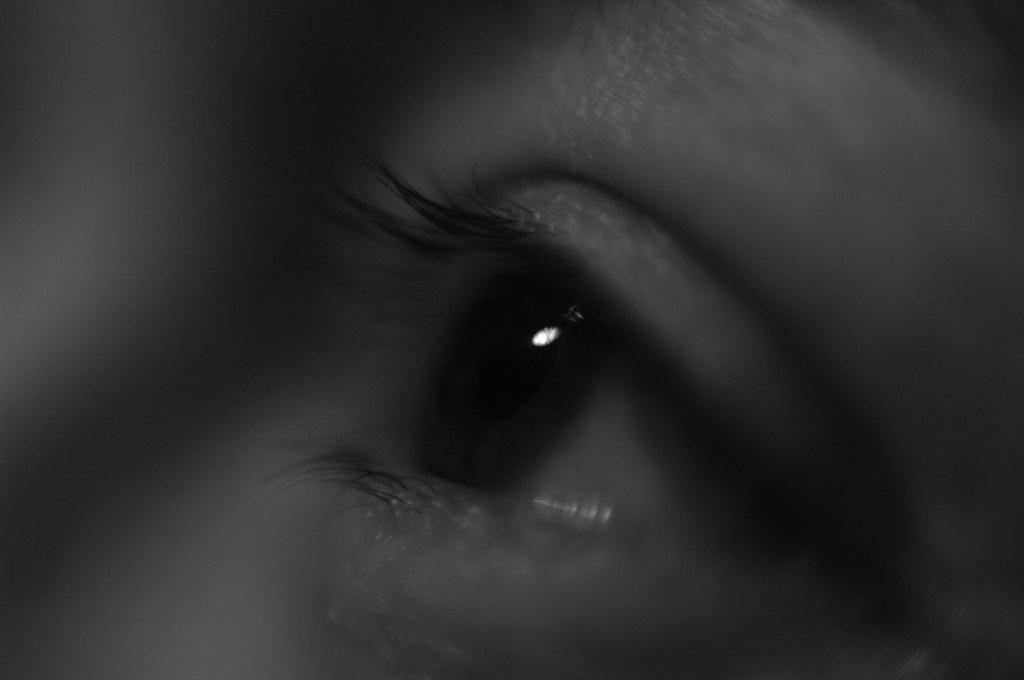 reverse-lens macro