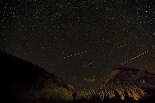 stars star wildlife astrophotography astronomy meteor 2010 1735 perseid perseids starshooting vle clff rockstate widefieldshooting starsshowerperseidsperseidperseid meteorcocoloradolandscapenightscapestarscapetellerdome areacompositenikond700nikon