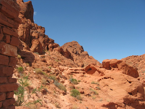 Valley of Fire | by cartoongoddess