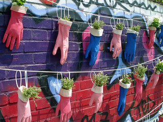 Urban Gardening | by diamond geezer