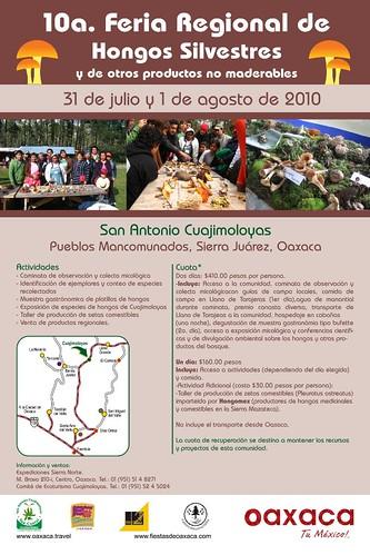 Hongos Silvestres 2010