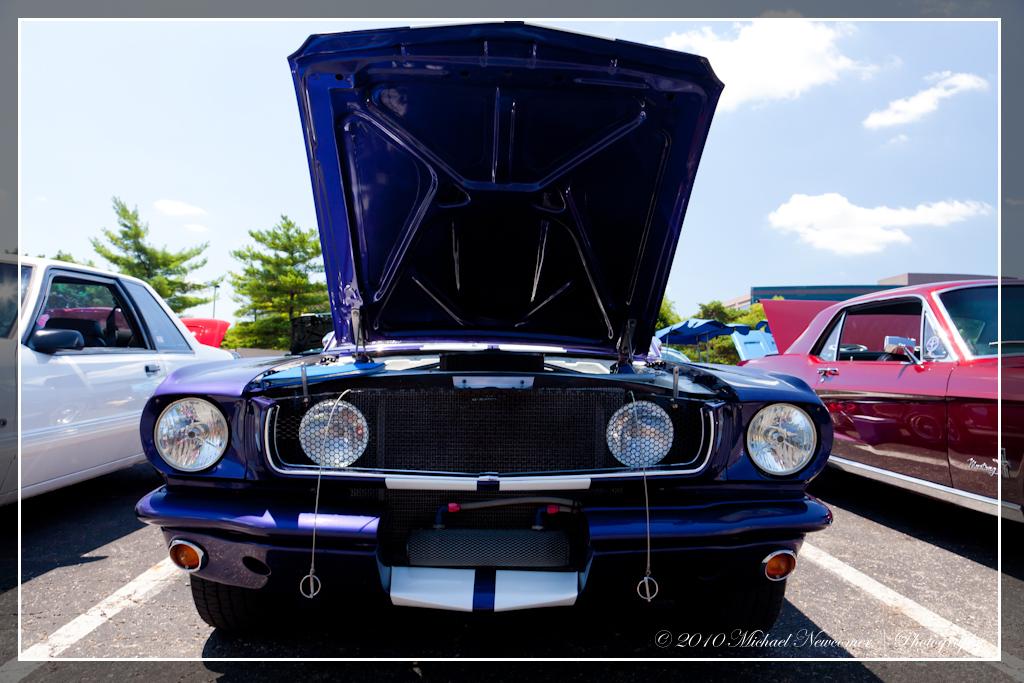 1964 Mustang Release