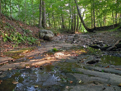 campalleghany garysnyder westvirginia lewisburg creek woods forest campalleghanyforgirls greenbrierriver bonniecoatesott