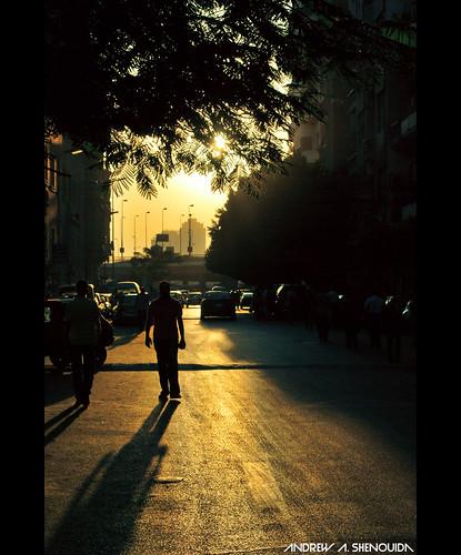 photography flickr andrewashenouda