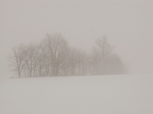 winter snow storm ice weather fog pennsylvania farmland icestorm icy lancastercounty icefog wintersunrise badweather winterstorm winterweather wintermorning coldmorning snowfog icecovered icecoated icecoveredtrees