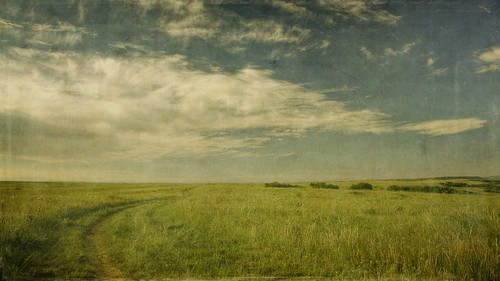 road morning sky grass clouds canon vintage landscape colorado horizon meadow dirty dirtroad wildflowers aged plains hdr 16x9 castlepines memoriesbook t1i