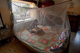 Previniendo la malaria   by United Nations Development Programme