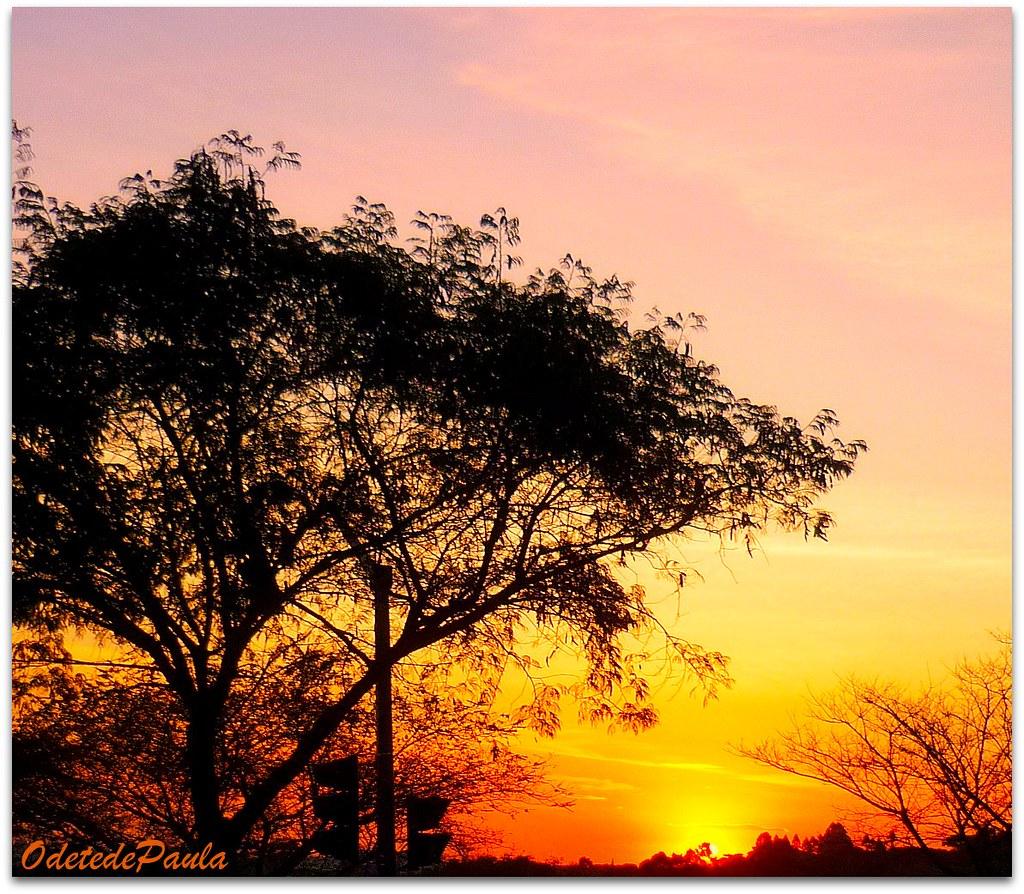 Pour Domi Désolé Je Suis En Retard Joyeux Anniversaire Flickr