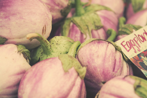 eggplant {Explored} | by RebeccaVC1