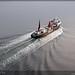 Tanker, bulk & cargoships pt. 1