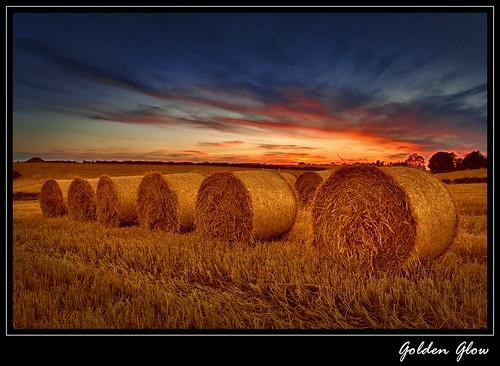 sunset barley straw northernireland bales colorphotoaward photosandcalendar newgoldenseal passiondéclic