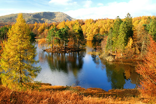 Tarn Hows | by Richard Towell