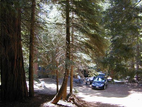 Sequoia Primitive Camps