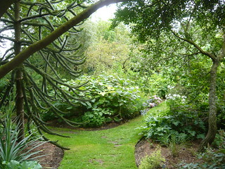 Chelsea Physic garden | by brianpettinger