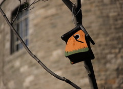 Bird House at Place du Canada, Downtown Montreal