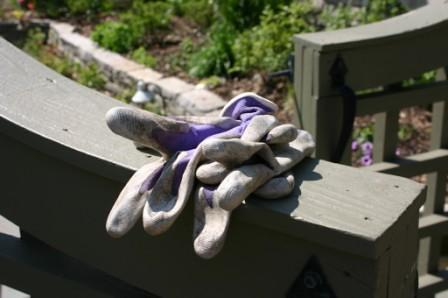 Garden Gloves | by thegardenbuzz