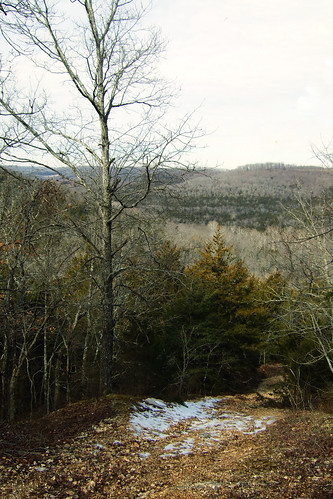 hiking gsa silvertrail fujifinepixf30 busiekstateforestandwildlifearea journal2011
