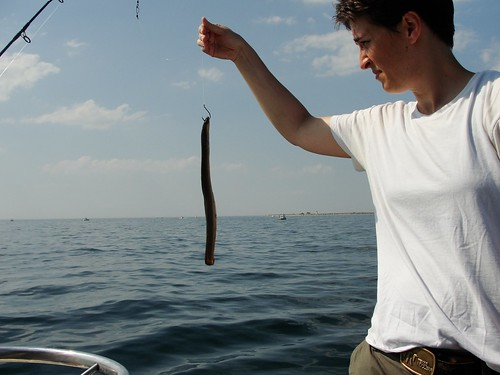 Fishing | by The Rachel Maddow Show
