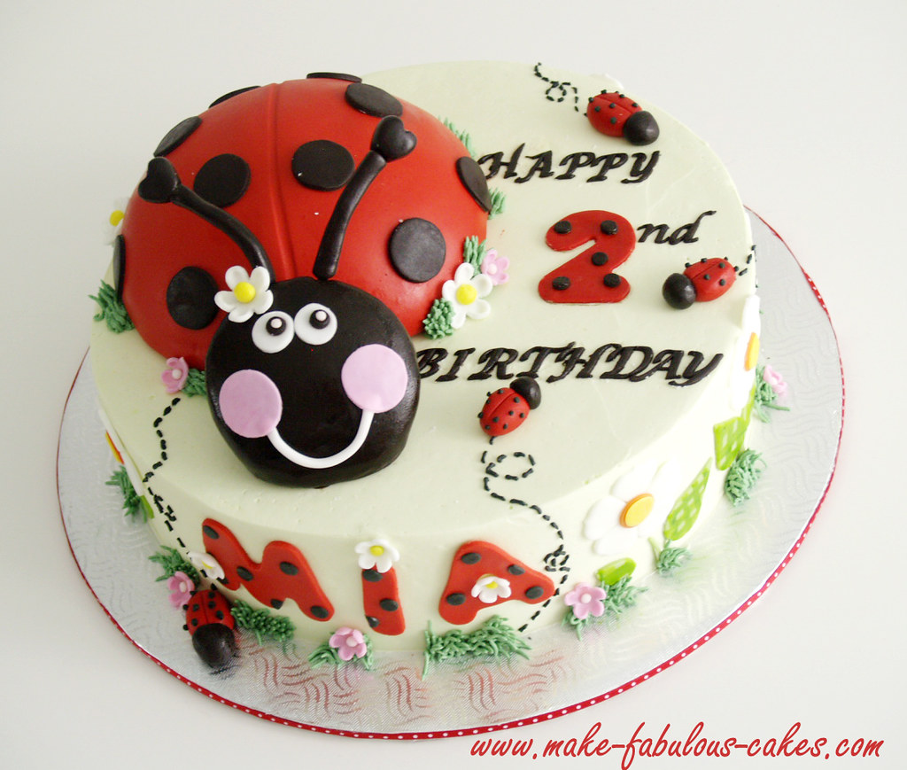 Superb Ladybug Birthday Cake Pictures And More At Ladybug Birthda Flickr Funny Birthday Cards Online Alyptdamsfinfo