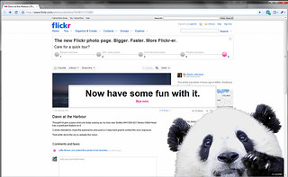 Flickr Panda Pop Up - Now have some fun with it | by Hexagoneye Photography