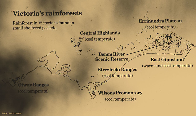 Victorian Rainforests Map - Warm Temperate and Cool Temperate Rainforest