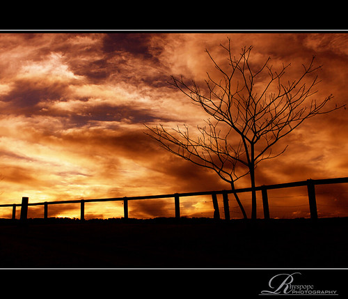 new morning blue winter sunset sky orange cloud brown black mountains tree mill nature silhouette yellow wales clouds rural sunrise canon fence landscape evening countryside wire branch skies afternoon natural south horizon country peaceful australia nsw aussie hawkesbury kurrajong 500d rhyspope