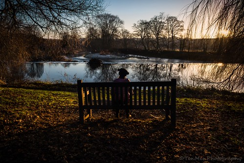 kirkstall abbey wier water river bench girl tree sunset scenery landscape reflection leaves