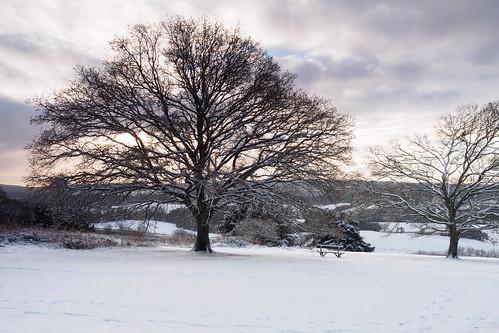 em10 guildford landscape mft microfourthirds newlandscorner omd olympus snow sunrise surreyhills winter albury england unitedkingdom gb