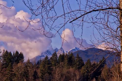 landscape mountains trees cloud bluesky dramaticcloud goldenearsmountains mapleridge bc poplarbar riverroad langley outdoor snow scenic