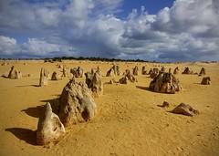 Nambung National Park - The Pinnacles 7
