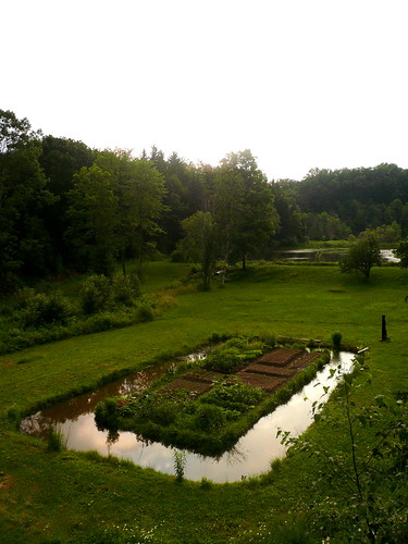 trees sunset sky food brown green water vegetables grass june garden landscape outdoors evening pennsylvania earth soil organic moat edible horticulture birdseyeview thefarm