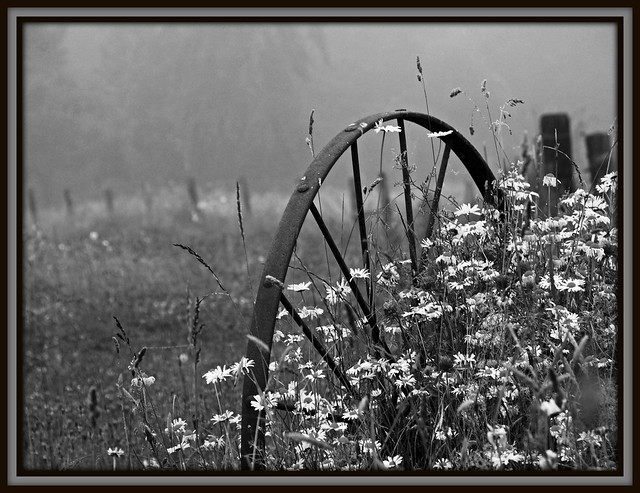 Onward, through the fog...